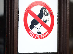 No puffin bordje